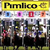 2008 Preakness Stakes Odds: Big Brown at 3/10 odds to win