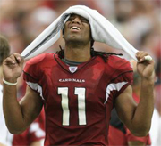 Cardinals Larry Fitzgerald slapped with paternity lawsuit