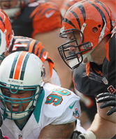 Cincinnati Bengals vs. Miami Dolphins: Line and point spread