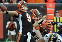 Cincinnati Bengals: Betting Odds 2007
