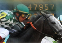 Kentucky Derby 2010: Contenders and Derby odds