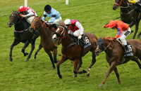Royal Ascot: 2008 Golden Jubilee Stakes odds and contenders