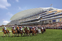 Golden Jubilee Stakes: Horse racing at Royal Ascot, Miss Andretti favorite
